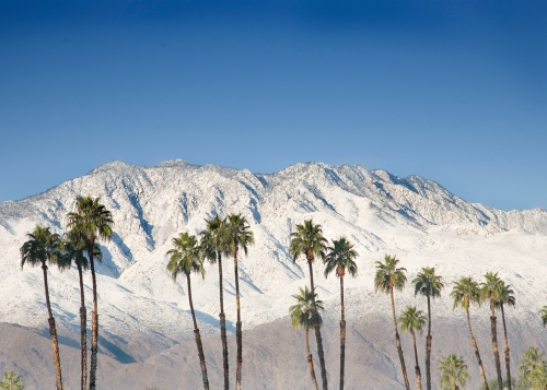 moutainsnowpalms.jpg